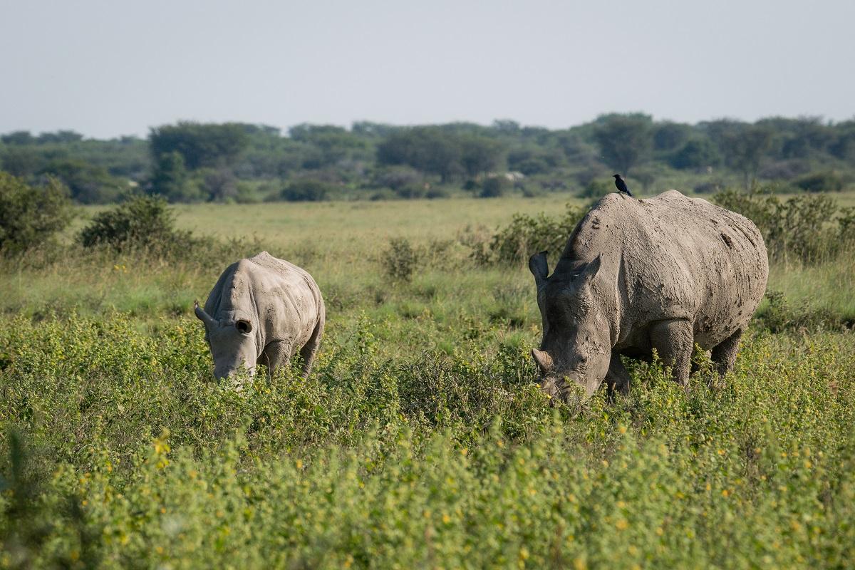 Fotoreis Oost Afrika